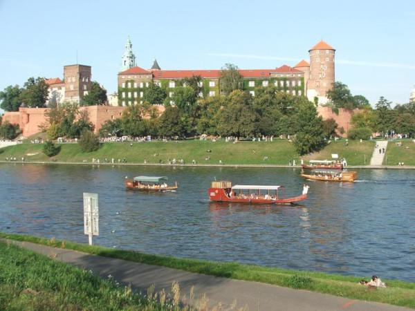 Польские военнослужащие присоединились к борьбе с экологической катастрофой в реке Висла. экология, рыба, река, Висла, Польша