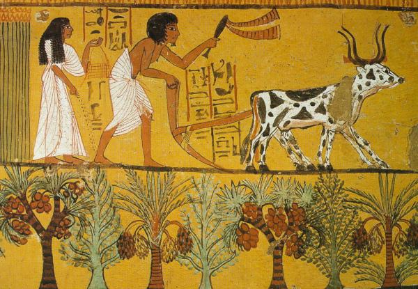 Деятельность человека повлияла на климат 4 тыс. лет назад. экология, ученые, климат