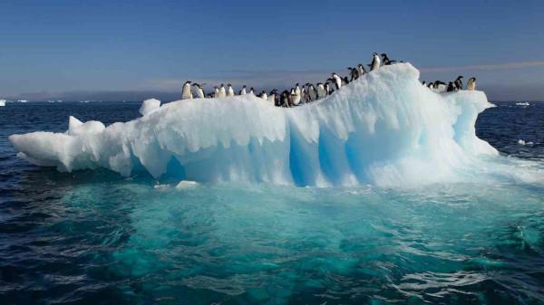 Ученые построили точную карту движения льдов Антарктиды. климат, глобальное потепление, ледники, антарктида