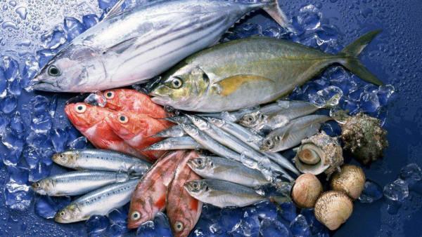 В Крыму возбудили дело о незаконном вылове крабов и кефали на сумму 900 тыс. рублей. рыба, кефаль, крабы, Крым