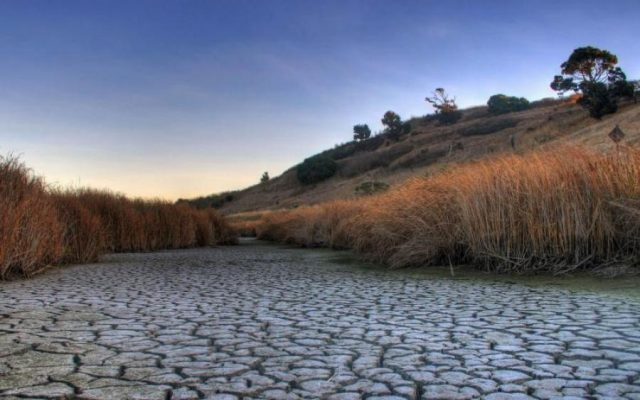 Озеро Ямное снова ушло под землю. 13547.jpeg