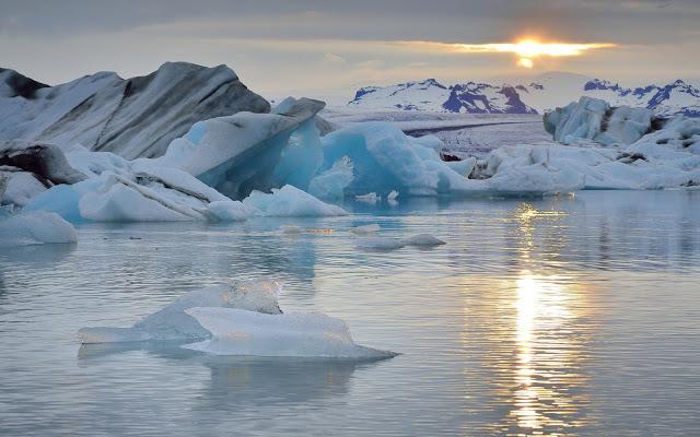 Сайка ушла к кромке полярных льдов. 13580.jpeg