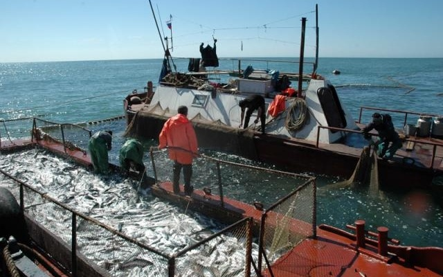 """Рыболовный траулер М-0192 """"Тор"""" застрял в Баренцевом море. 13581.jpeg"""
