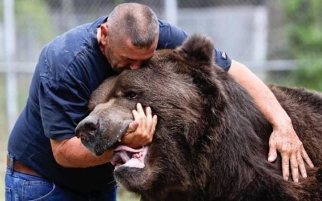 Американец – друг медведей. 13593.jpeg