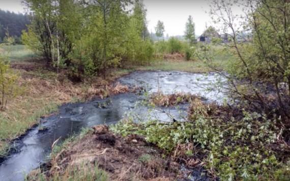 В Брянской области есть гудроновое озеро. озеро