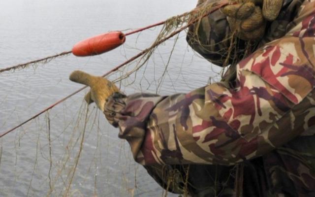 Рыбака могут обвинить в краже чужой собственности. 13596.jpeg
