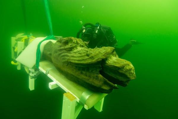 На дне Балтики найден королевский корабль, затонувший в 1495 году. археология, море, корабль, Балтийское море