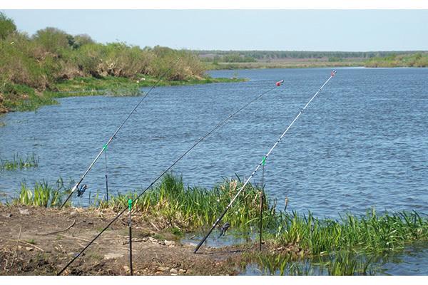 Места для рыбалки. 14606.jpeg