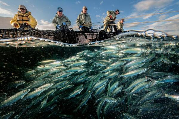 Малоизвестные и тайные места для рыбалки в Северной Америке. 15614.jpeg