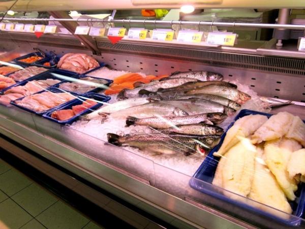 В Роспотребнадзоре рассказали, как в рыбу попадают «токсичные элементы». рыба, токсичные элементы, Роспотребнадзор