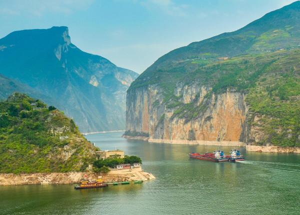В Китае сняли на видео загадочное длинное существо в реке. существо, река, Янцзы, Китай