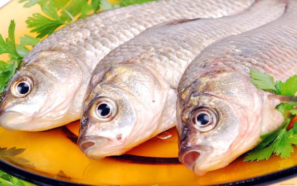 В российских магазинах может исчезнуть свежая рыба. рыба, рыбная продукция, магазины