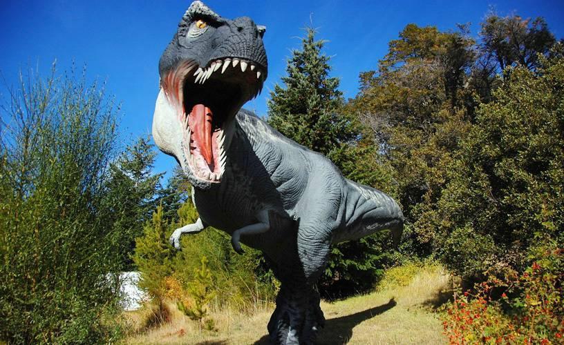 В Аргентине НЛО прилетал к динозаврам. 14652.jpeg