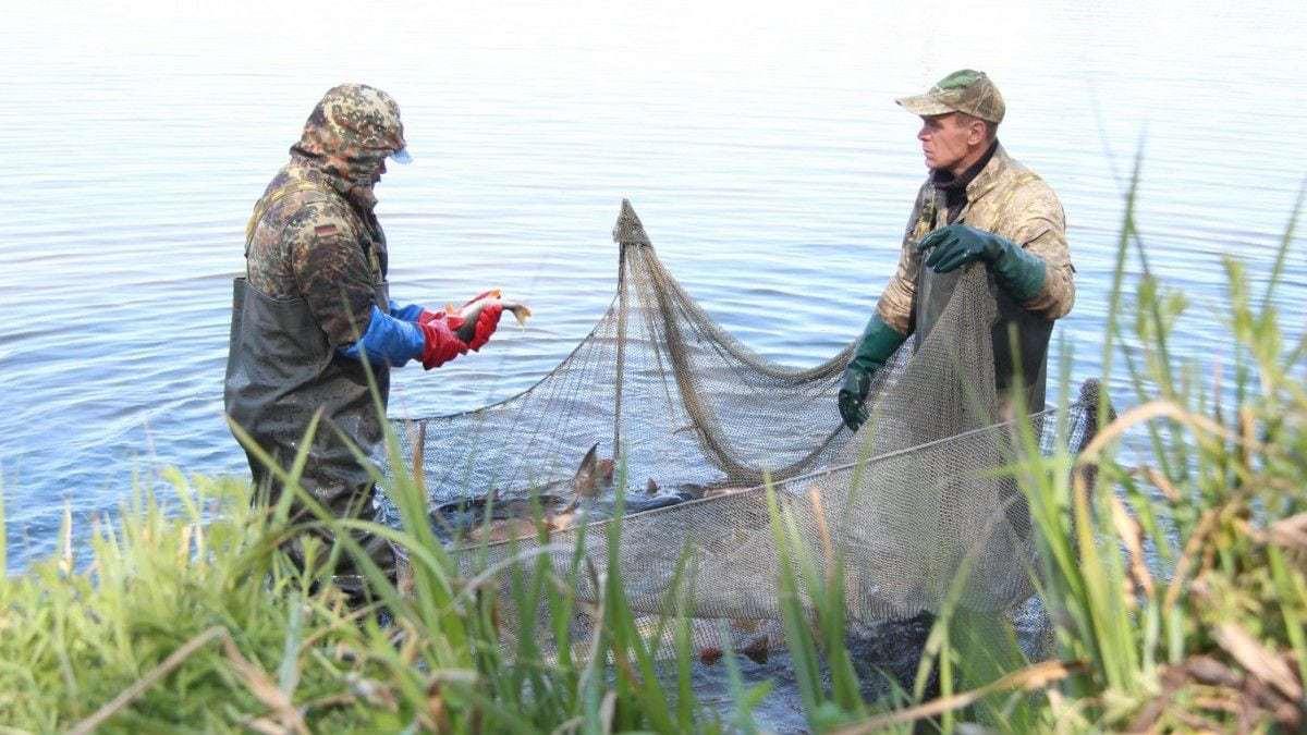 Сызранский рыбак сжег сети браконьеров. Браконьеры