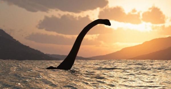 Эксперт: чудовище из озера Лох-Несс – это большой угорь?. рыба, угорь, чудовище, Лох-Несское чудовище, озеро, Лох-Несс, Шотландия
