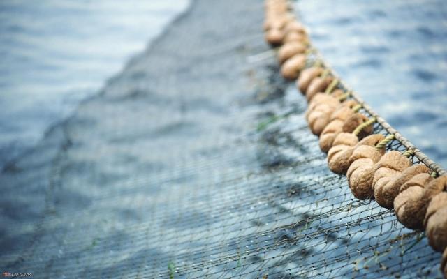 Рыболовные сети найдут и под землей. 13663.jpeg