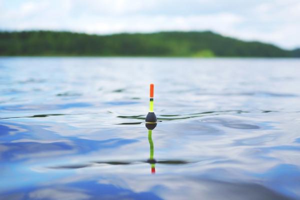 Секреты хорошей рыбалки. 13676.jpeg