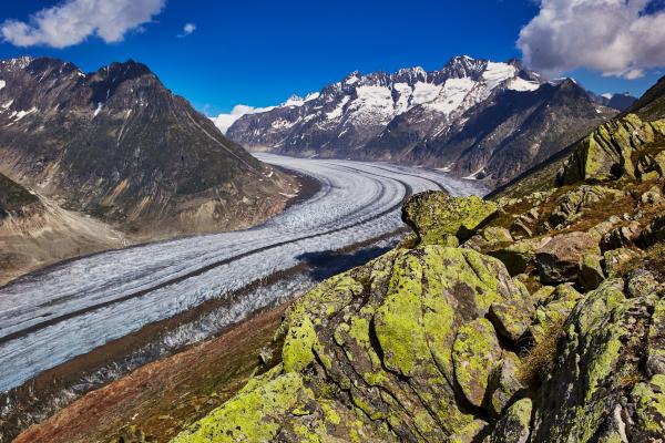 АЛЕЧСКИЙ ЛЕДНИК В АЛЬПАХ МОЖЕТ ИСЧЕЗНУТЬ К 2100 ГОДУ. экология, климат, глобальное потепление, ледники, Алечский ледник, Альпы