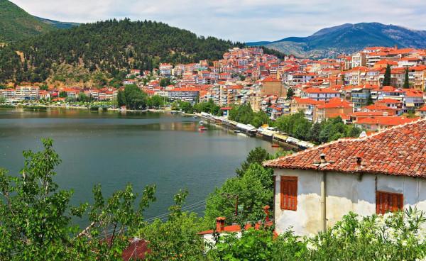 Жара и засуха привела к массовой гибели рыбы в озере на севере Греции. рыба, заповедник, Греция