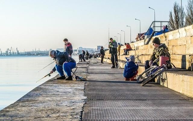 Ялтинским рыбакам запретят ловить кефаль. 13688.jpeg