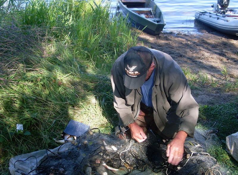 Пенсионеров поймали на браконьерстве. 15690.jpeg