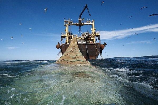 Глобальный сайт для отслеживания рыболовецких судов со всего мира. 14692.jpeg