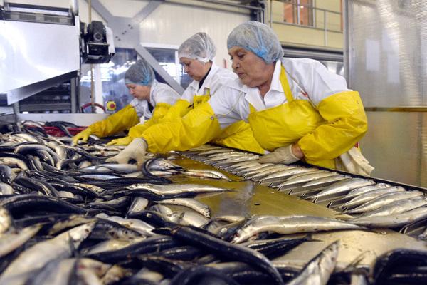 Рыбачки США получат деньги за сексуальные домогательства. 14696.jpeg