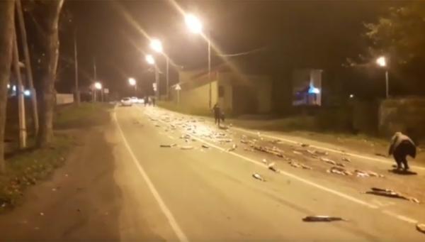 На Сахалине тысячи лососей были вывалены на асфальт. рыба, грузовик, лосось, Сахалин