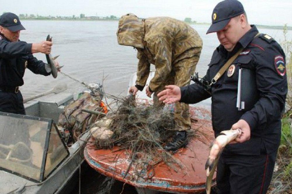 Уватский браконьер нарыбачил на 77 тысяч. 15705.jpeg