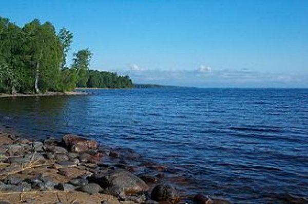 «Скоро рыбы не будетт». В Онежское озеро сбрасывают промышленные отходы. рыба, Онежское озеро, отходы, экология