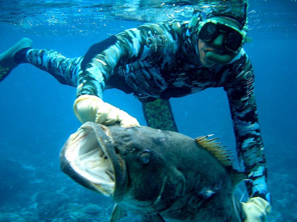 Волжских браконьеров поймали с аквалангами. 15711.jpeg