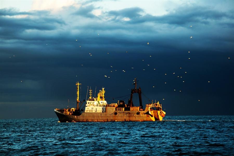 Камчатский колхоз наказали за незаконную ловлю рыбы. 15713.jpeg