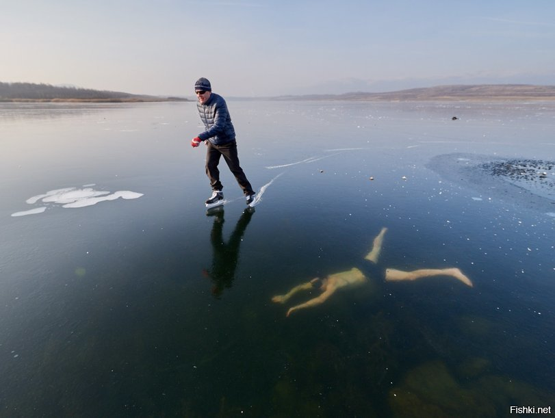 Чех плавал подо льдом, как тюлень. 14718.jpeg