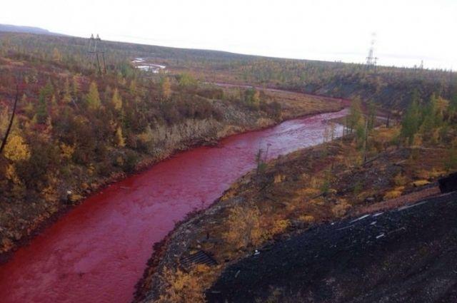 В Приморье вода в реке превратилась в кровь. 14719.jpeg