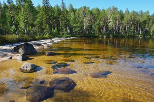 НаводоемахСеверо-Западавступили всилу осенние запреты. рыба, водоемы, осень, запрет  на вылов, нерест, Северо-Запад,  Карелия