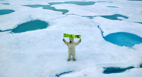 Потепление в России происходит в два раза быстрее, чем в целом на планете. глобальное потепление, ученый, метеоролог, Владимир Лысов, Уральский федеральный университет, Росгидромет