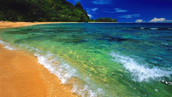 У любителей и защитников моря праздник. море, Всемирный день моря, ООН, защитники моря