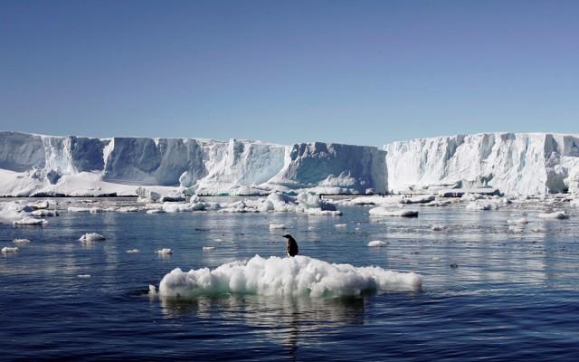 Китай хочет построить первый аэропорт в Антарктиде. 13730.jpeg