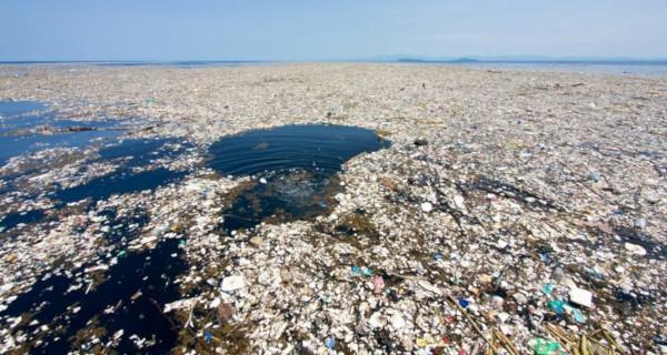 В Черном море найдены мусорные острова. экология, мусор, мусорный остров, ученые, Дмитрий Глазов, Институт проблем экологии и эволюции имени Северцова РАН