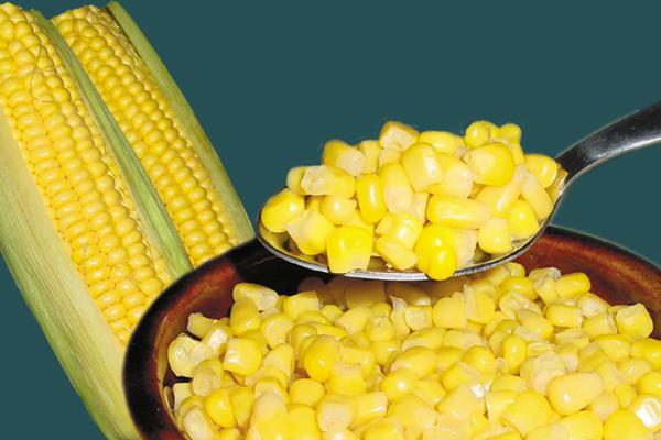 Секреты «кукурузной» рыбалки. 14759.png