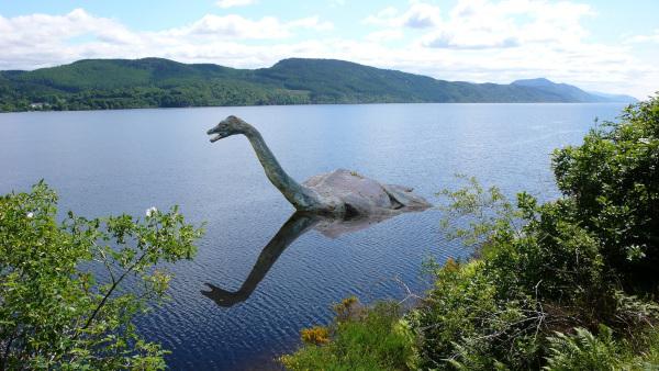 Подводная камера запечатлела неизвестного монстра в озере Лох-Несс. озеро, камера, существо, Лох-Несское чудовище, Шотландия