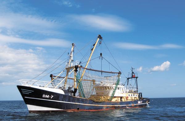 Рыбаки избежали санкций Вашингтона. рыба, рыбаки, санкции, Национальное управление океанических и атмосферных исследований США, Вашингтон, США