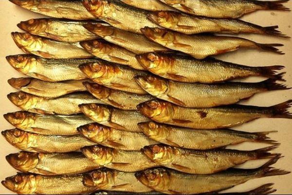 Небольшая рыба-салака. 15769.jpeg