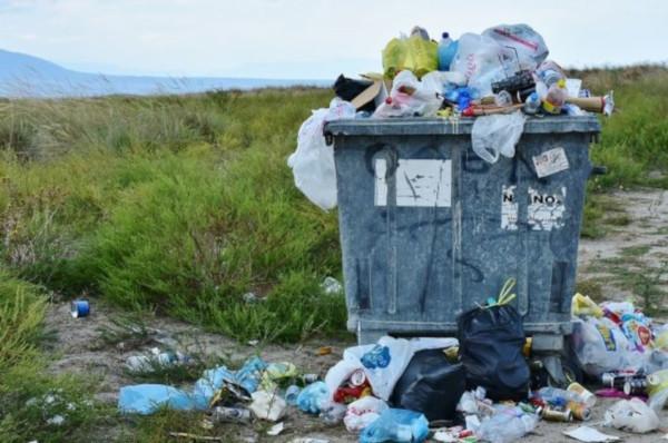 Власти Пскова направят около 140 млн рублей на ликвидацию свалки в городе. экология, Псков, свалка, город, мусор, власть, проект