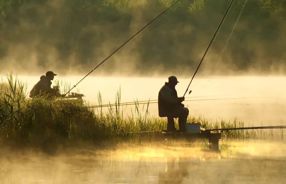 Депутатам не все нравится в законе о рыбалке. 13783.jpeg