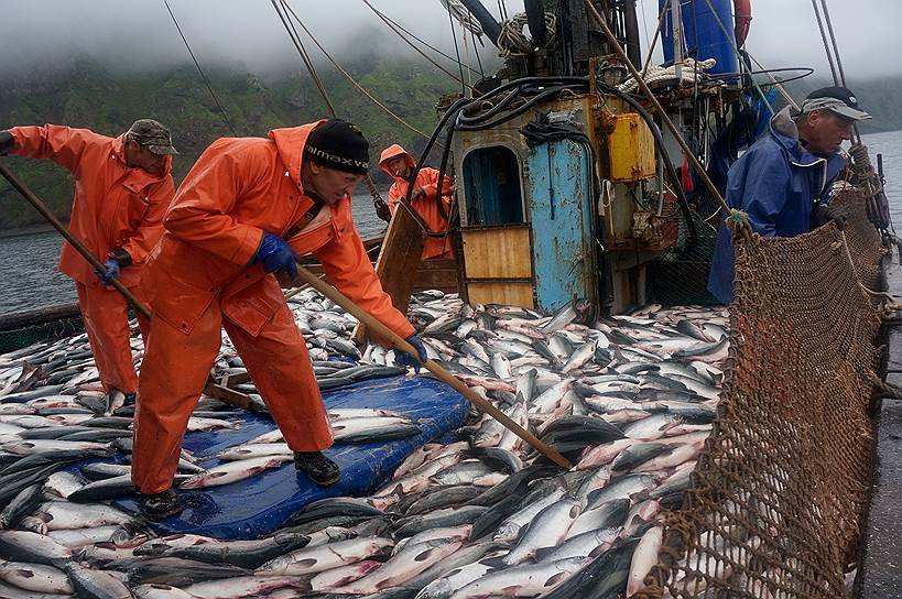 Рыбный промысел – работа действительно вредная. 15789.jpeg