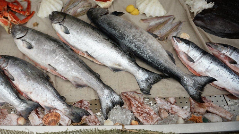 «Приморская рыба» активно пошла в народ. 15799.jpeg