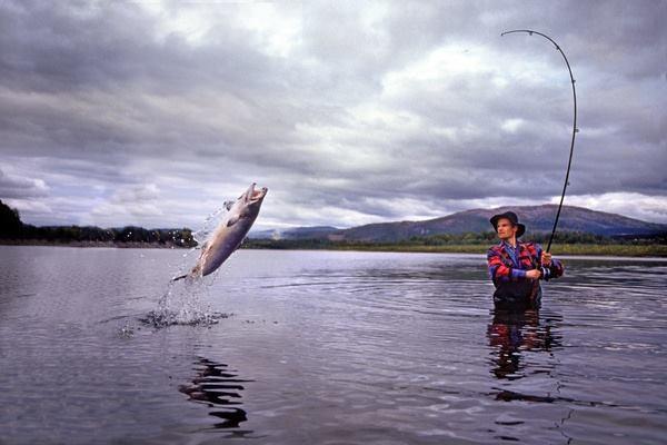 Простые, но рабочие рыбацкие советы.. 13818.jpeg
