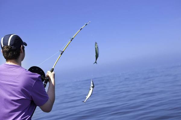 Полезные рекомендации рыбаку (часть 8).. 14843.jpeg
