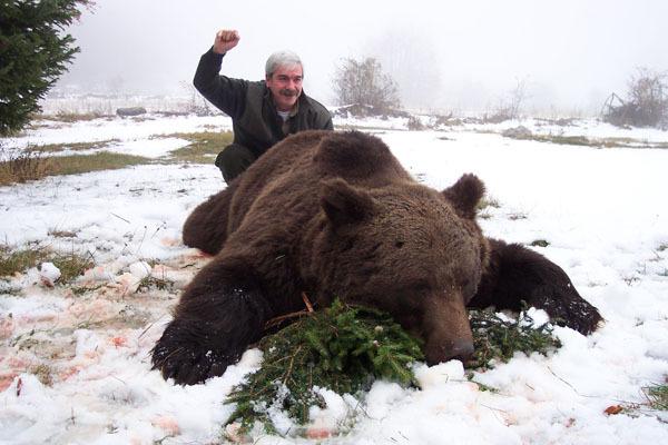 Пенсионер подрался с медведем. 13845.jpeg